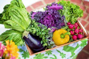 Flower and Veggie Gardening for Seniors